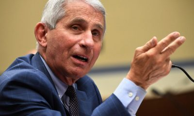 Bernie Sanders Fauci: Schools should be outdoors as much as possible