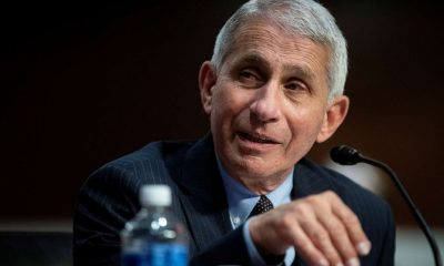 Bernie Sanders Fauci fires back at White House aide who trashed him in op-ed – ABC News
