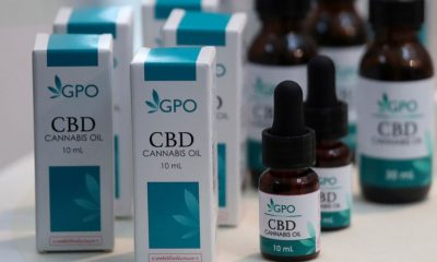CBD  cannabis Thai Cabinet approves draft law expanding access to cannabis